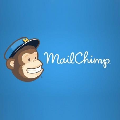 FORMAZIONE MAILCHIMP